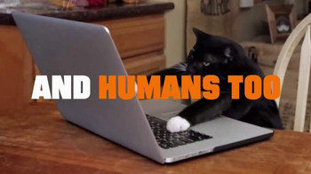 Truth TV Spot, 'CATmageddon: Progress Report' - Thumbnail 3