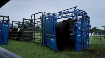 Priefert Manufacturing Squeeze Chutes TV Spot, 'Easy on the Cowboy' - Thumbnail 4
