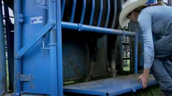 Priefert Manufacturing Squeeze Chutes TV Spot, 'Easy on the Cowboy' - Thumbnail 5