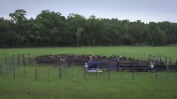 Priefert Manufacturing Squeeze Chutes TV Spot, 'Easy on the Cowboy' - Thumbnail 7