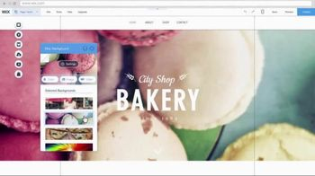 Wix.com TV Spot, 'Professional Website'