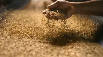 Coors Banquet TV Spot, 'How It's Done: Barley'