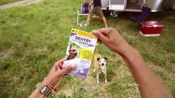 PetSmart TV Spot, 'Frisbee' Song by Queen - Thumbnail 1