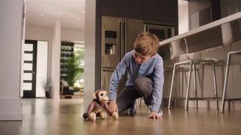 Zoomer Chimp TV Spot, 'Go Bananas' - 699 commercial airings