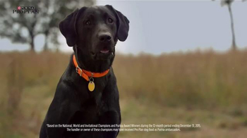 Purina Pro Plan TV Spot, 'Sporting Dogs' - Thumbnail 1