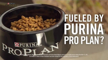 Purina Pro Plan TV Spot, 'Sporting Dogs' - Thumbnail 3