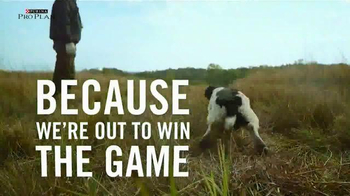 Purina Pro Plan TV Spot, 'Sporting Dogs' - Thumbnail 4