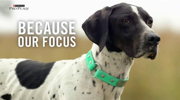 Purina Pro Plan TV Spot, 'Sporting Dogs' - Thumbnail 5