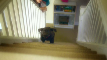 PETCO TV Spot, 'PETCO, The Pet Grocery Store Your Pet Loves!' - Thumbnail 1