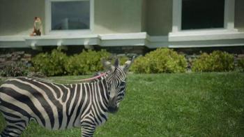 SafeAuto TV Spot, 'Terrible Quotes: Zebra' - Thumbnail 5