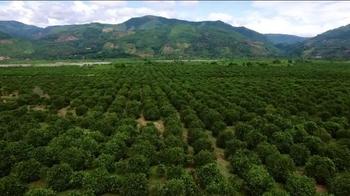 Visit Peru TV Spot, 'ESP: Produce in Peru' Featuring Henry Ian Cusick - Thumbnail 2