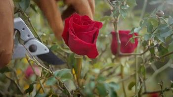 Duluth Trading Company TV Spot, 'Happy Mother's Day' - Thumbnail 1