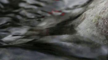 Oris Aquis Date Relief TV Spot, 'Expedition Swim' Featuring Ernst Bromeis - Thumbnail 5
