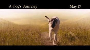 A Dog's Journey - Alternate Trailer 7