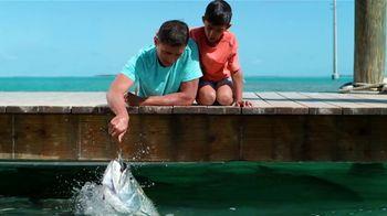 Visit Florida TV Spot, 'Get Away' - Thumbnail 8