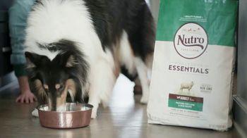 The Nutro Company TV Spot, 'Nat Geo WILD: Barkfest' - Thumbnail 4