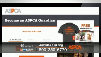 ASPCA TV Spot, 'Can't Escape the Violence' - Thumbnail 5