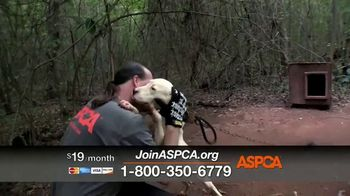 ASPCA TV Spot, 'Can't Escape the Violence' - Thumbnail 6