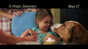 A Dog's Journey - Alternate Trailer 8