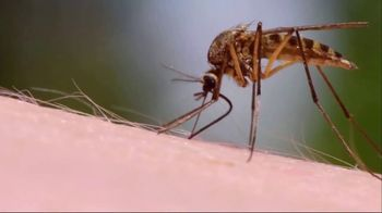 Spartan Mosquito Eradicator TV Spot, 'Ruthless Hunters'