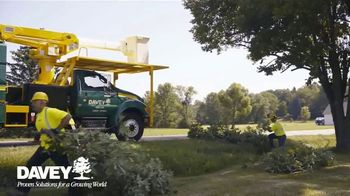 Davey Tree Expert Company TV Spot, 'Trees or Shrubs' - Thumbnail 5