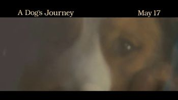 A Dog's Journey - Alternate Trailer 6