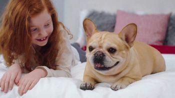 Mattress Firm Semi-Annual Sale TV Spot, 'Top-Rated Mattresses' - Thumbnail 2