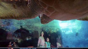 SeaWorld Annual Pass TV Spot, 'Always Real, Always Amazing' - Thumbnail 2