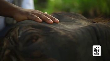World Wildlife Fund TV Spot, 'Protecting the Elephants' Song by Passenger - Thumbnail 4