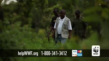 World Wildlife Fund TV Spot, 'Protecting the Elephants' Song by Passenger - Thumbnail 6