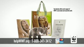 World Wildlife Fund TV Spot, 'Protecting the Elephants' Song by Passenger - Thumbnail 7