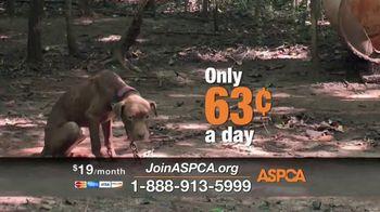 ASPCA TV Spot, 'The Gift of Life' - Thumbnail 6