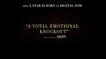 A Star Is Born Home Entertainment TV Spot - Thumbnail 6