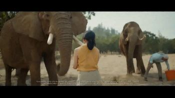 Chase Private Client TV Spot, 'Plan Yourself Free'