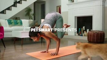 PetSmart TV Spot, 'The Workout Buddy' - Thumbnail 2