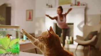 PetSmart TV Spot, 'The Workout Buddy' - Thumbnail 9