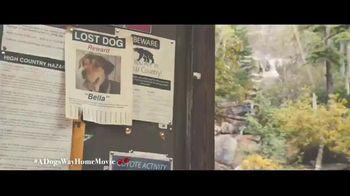 A Dog's Way Home - Alternate Trailer 32
