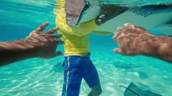 Cayman Islands Department of Tourism TV Spot, 'Swimming With Stingrays'