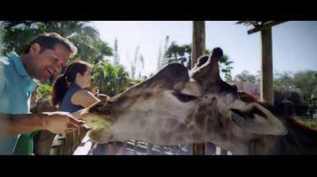 Hilton Hotels Worldwide TV Spot, 'Escape to Florida' - Thumbnail 6