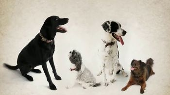 Bass Pro Shops Dog Days Family Event TV Spot, 'Bring Your Best Friend' - Thumbnail 1