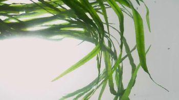 Nair Leg Mask TV Spot, 'Flawless, Radiant and Moisturized' - Thumbnail 5