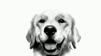 Royal Canin TV Spot, 'Health Is Magnificient' - Thumbnail 2