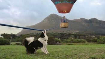 Greenies TV Spot, 'Hot Air Balloon'