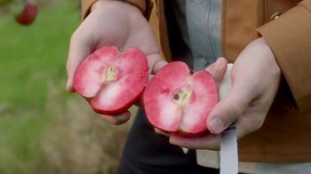 Angry Orchard Rosé TV Spot, 'Cider Lessons: Blossom Time'