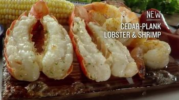 Red Lobster Cedar-Plank Seafood TV Spot, 'Planked to Perfection' - Thumbnail 6