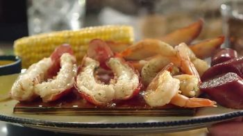 Red Lobster Cedar-Plank Seafood TV Spot, 'Planked to Perfection' - Thumbnail 9