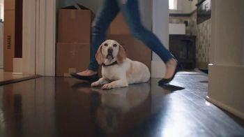 Unison TV Spot, 'Moving Day' - Thumbnail 4