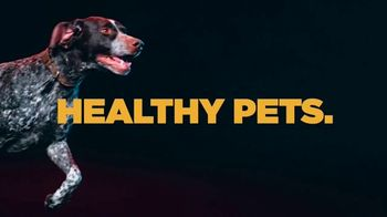 PETCO TV Spot, 'Hill's Science Diet: Lifelong Health Starts with Science'