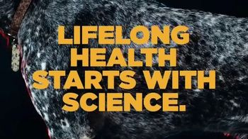PETCO TV Spot, 'Hill's Science Diet: Lifelong Health Starts with Science' - Thumbnail 8