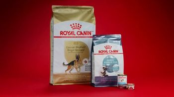 PETCO TV Spot, 'Royal Canin: Feed Their Magnificence' Song by Henry Bowers-Broadbent - Thumbnail 9